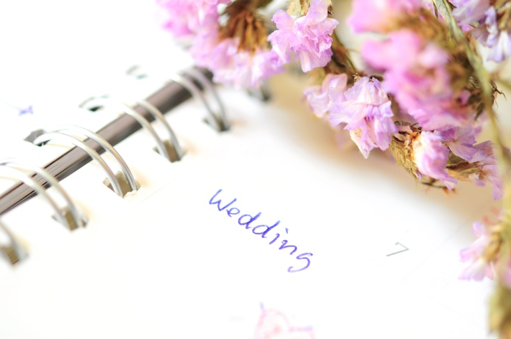How to plan a wedding on a budget wedsafe wedding insurance purple flowers and junglespirit Choice Image