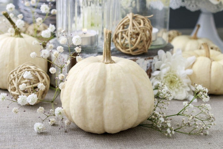 White pumpkin among late fall-inspired table decorations